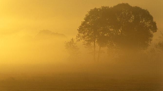 Mgły pozostaną z nami do godz. 11